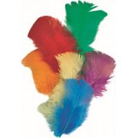 Knorr Prandell Dekoratīvas tītara spalvas 7cm, asorti, 16gab.